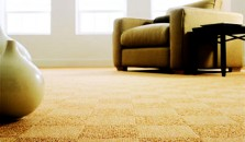 carpet 5  star flooring dalas